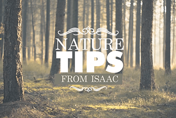 Nature Tips